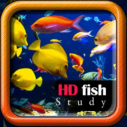 HD Fish Study
